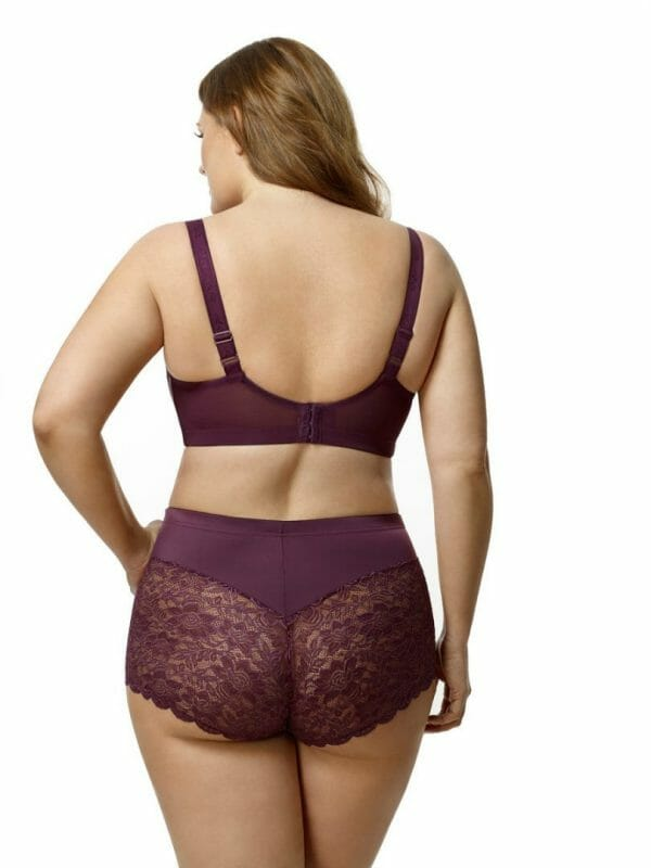 Elila Cheeky Stretch Lace Brief at Belle Lacet Lingerie